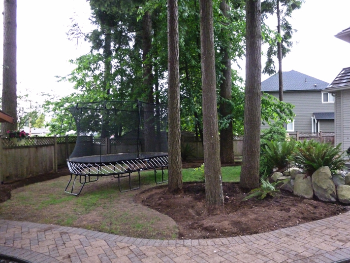 Backyard Makeover 11