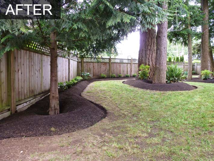 Backyard Makeover 29