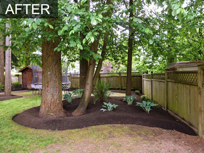 Backyard Makeover 39