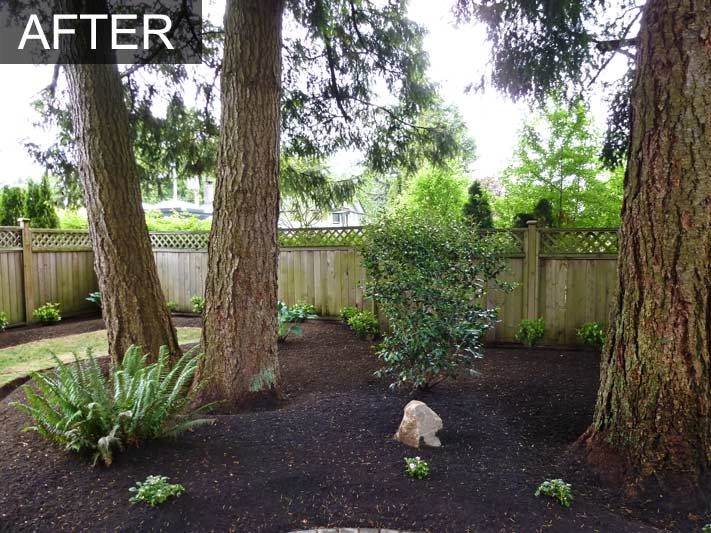 Backyard Makeover 40