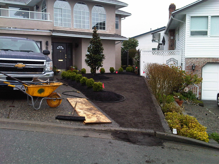 Front Yard Makeover 9