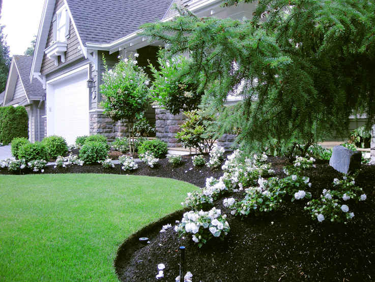 Front Yard Makeover 26