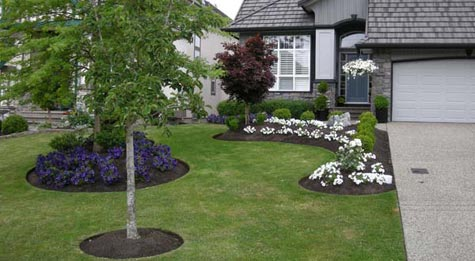 South Surrey home - after yard transformation